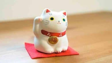 Photo of Japanese Culture : Maneki Neko